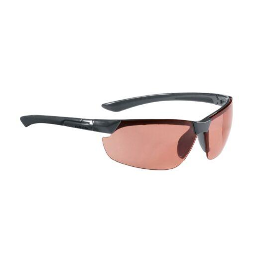 ALPINA DRAFF szemüveg